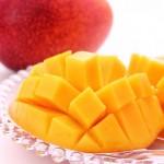 犬はマンゴーを食べても大丈夫?どれくらいの量ならいいの?