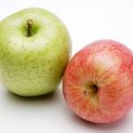 犬にりんごを食べさせても大丈夫?食べさせすぎるとどうなる?
